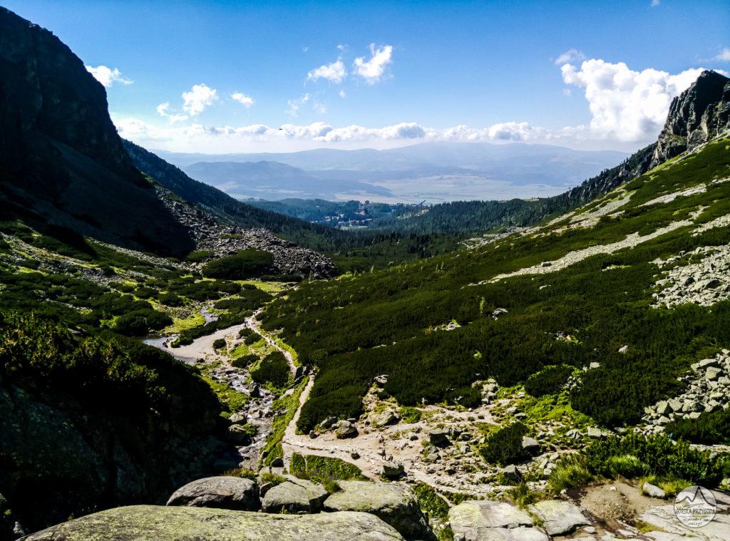 Dolina Młynicka
