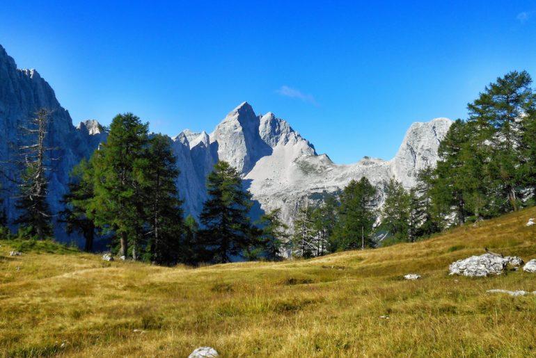 Jalovec Alpy Julijskie